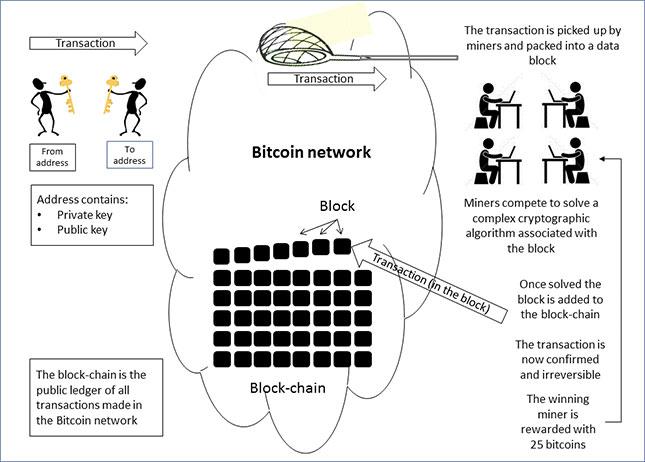 Tuur demeester bitcoin price